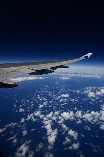 Fly0001_1