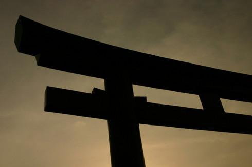 torii0001